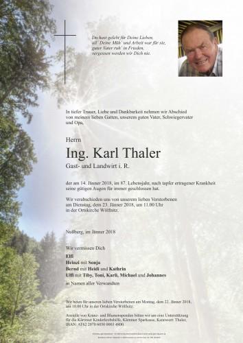 Ing. Karl Thaler