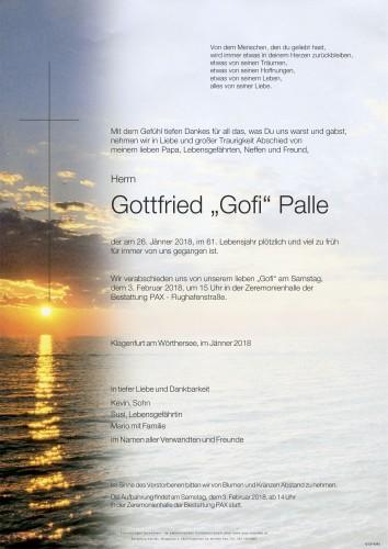 """Gottfried """"Gofi"""" Palle"""