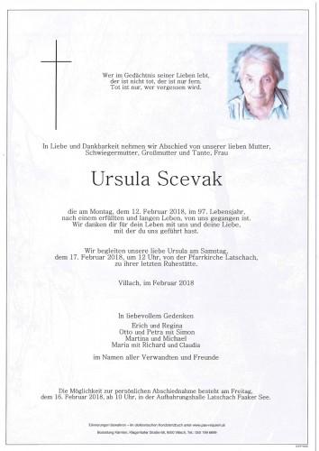 Ursula Scevak