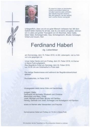Ferdinand Haberl  vlg.Liebenfelser