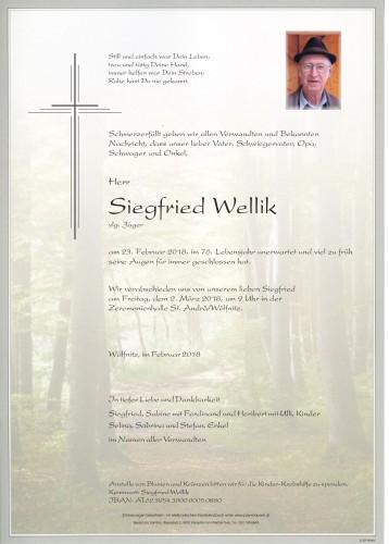 Siegfried Wellik
