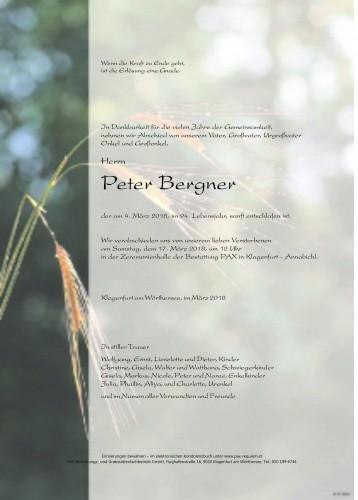 Peter Bergner
