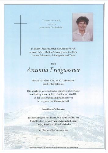 Antonia Freigassner