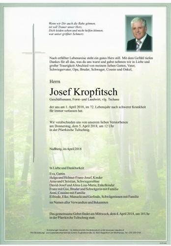 Josef Kropfitsch