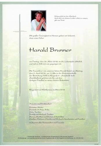 Harald Brunner