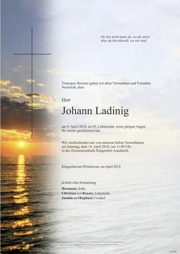 Johann Ladinig