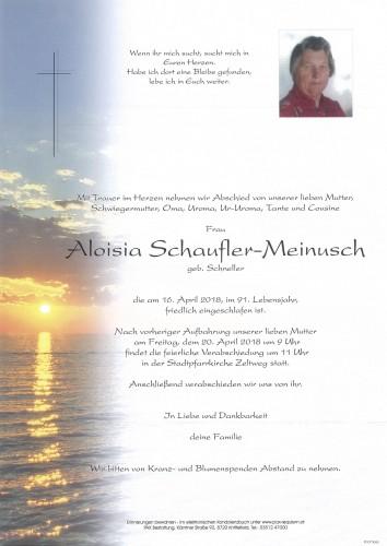 Aloisia Schaufler