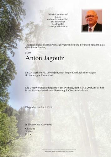 Anton Jagoutz