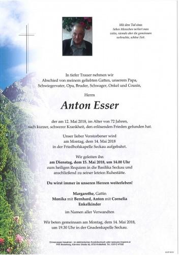 Anton Esser