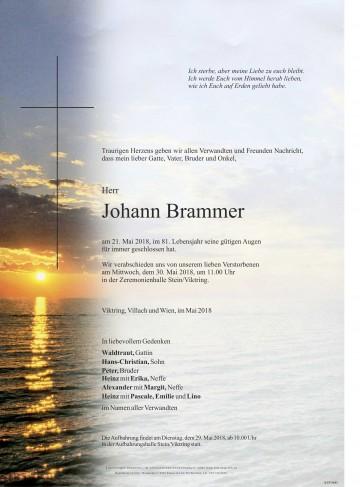 Johann Brammer
