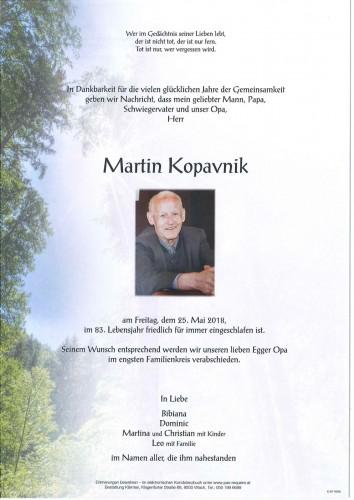 Martin Kopavnik