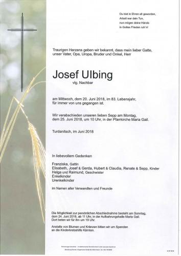 Josef Ulbing
