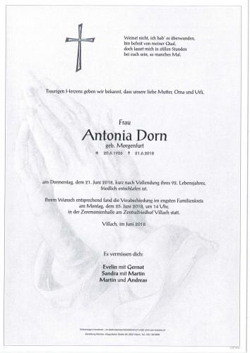 Antonia Dorn