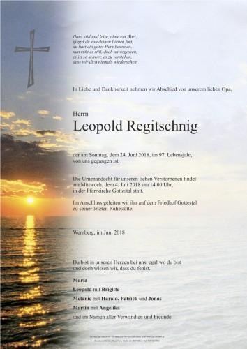 Leopold Regitschnig