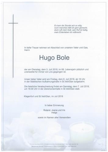 Hugo Bole