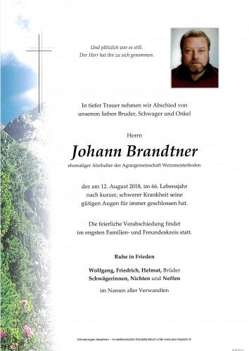 Johann Brandtner
