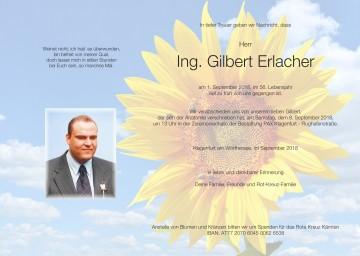 Ing. Gilbert Erlacher