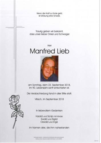 Ing. Manfred Lieb