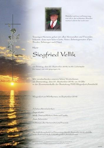 Siegfried Vellik