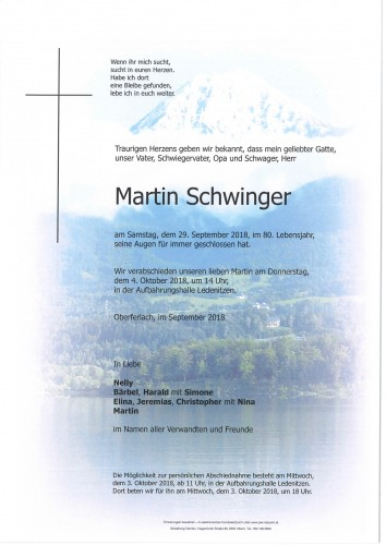 Martin Schwinger
