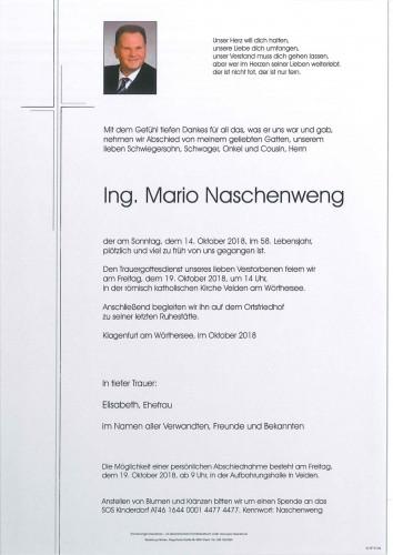 Ing. Mario Naschenweng