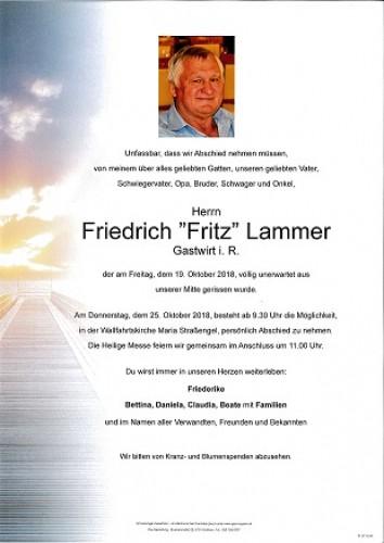Friedrich Lammer