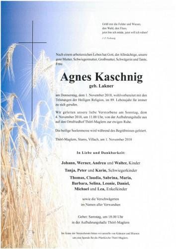 Agnes Kaschnig geb. Lakner