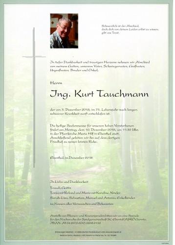 Ing. Kurt Tauchmann