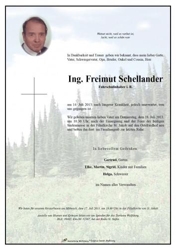 Ing. Freimut Schellander