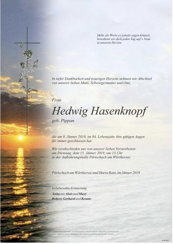 Hedwig Hasenknopf