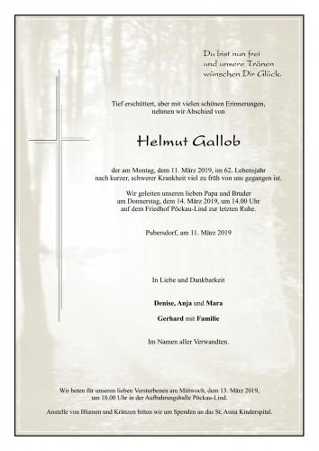 Helmut Gallob