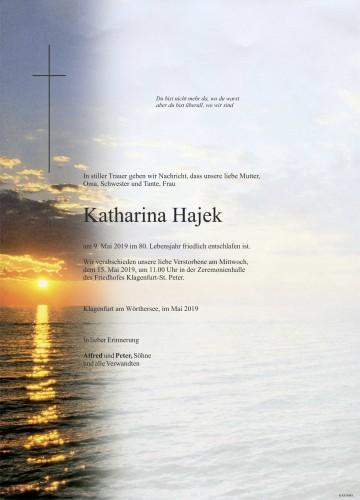 Katharina Hajek