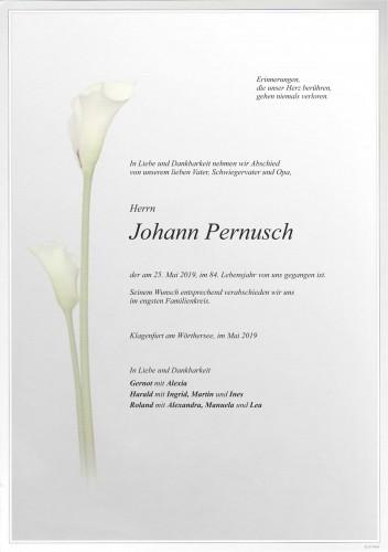 Johann Pernusch
