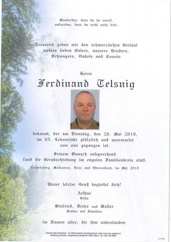 Ferdinand Telsnig