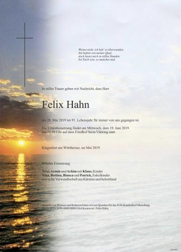 Felix Hahn