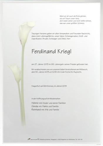 KRIEGL Ferdinand