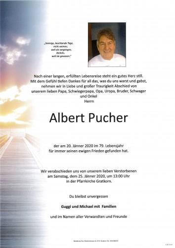 Albert Pucher