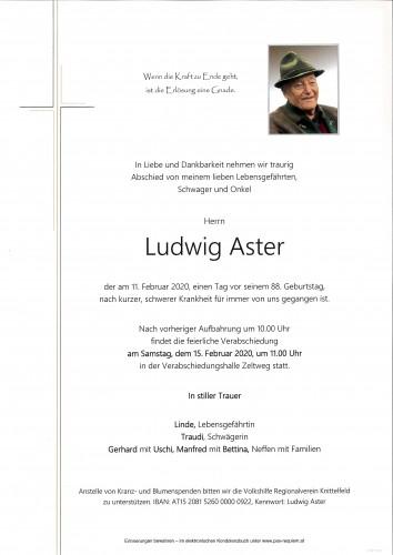 Ludwig Aster
