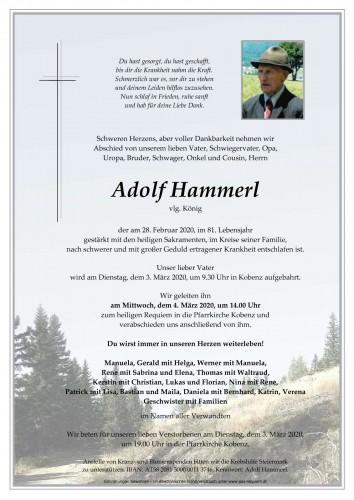 Adolf Hammerl, vlg. König