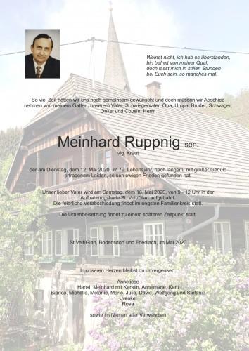 Meinhard Ruppnig