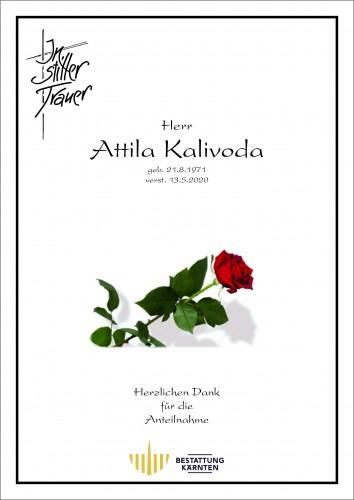 Attila Kalivoda
