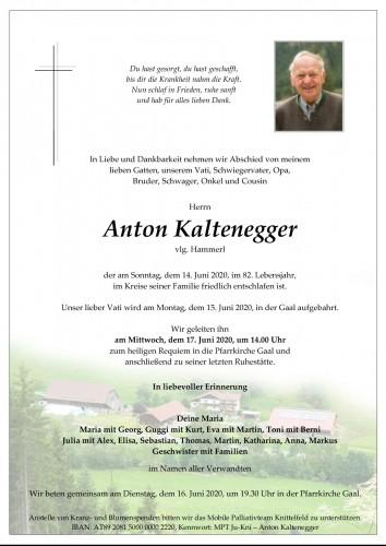 Anton Kaltenegger, vlg. Hammerl