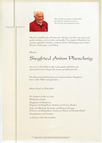 Anton Plieschnig
