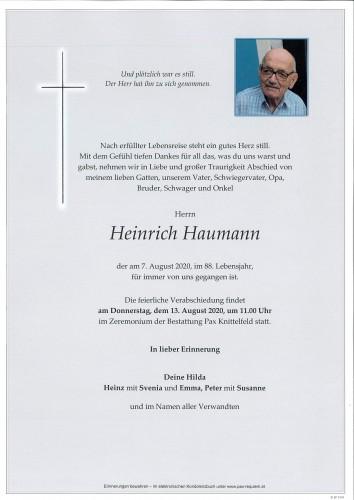 Heinrich Haumann