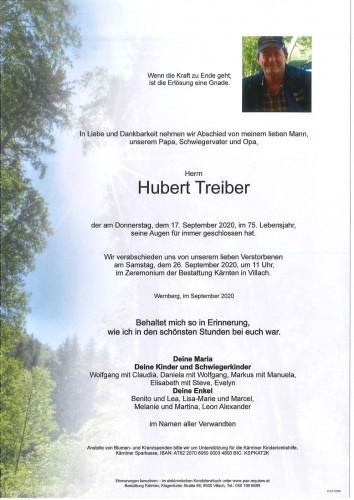 Hubert Treiber
