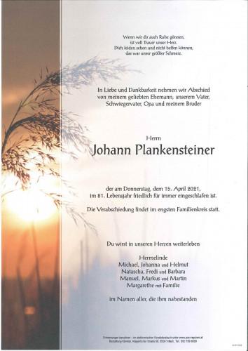 Johann Plankensteiner