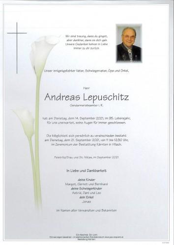 Andreas Lepuschitz