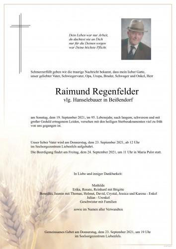 Raimund Regenfelder