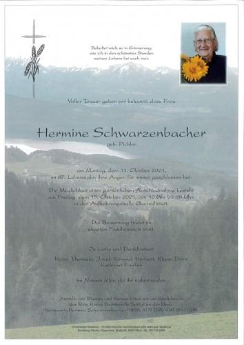 Hermine Schwarzenbacher