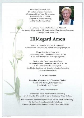 Hildegard Amon